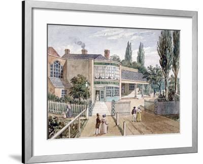 St Helena Tea Gardens, Lower Road, Rotherhithe, London, C1860--Framed Giclee Print