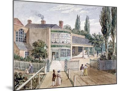 St Helena Tea Gardens, Lower Road, Rotherhithe, London, C1860--Mounted Giclee Print