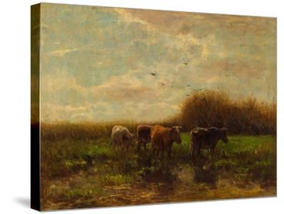 Cows at Evening-Willem Maris-Stretched Canvas Print