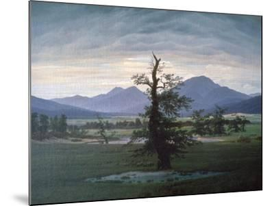 The Solitary Tree, 1823-Caspar David Friedrich-Mounted Giclee Print