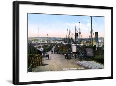 Loading Potatoes, Jersey, 1908--Framed Giclee Print