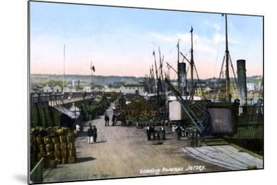 Loading Potatoes, Jersey, 1908--Mounted Giclee Print