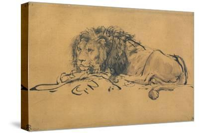 Lion Resting, Turned to the Left, C1650-Rembrandt van Rijn-Stretched Canvas Print