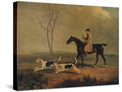 Tom Oldaker, Huntsman of the Berkley Hounds, on Pickle, with the Hounds, 1929-Benjamin Marshall-Stretched Canvas Print
