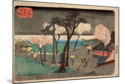 Cherry Trees in Rain on the Sumida River Embankment. (Sumida Zutsumi Uchû No Sakur)-Utagawa Hiroshige-Mounted Giclee Print