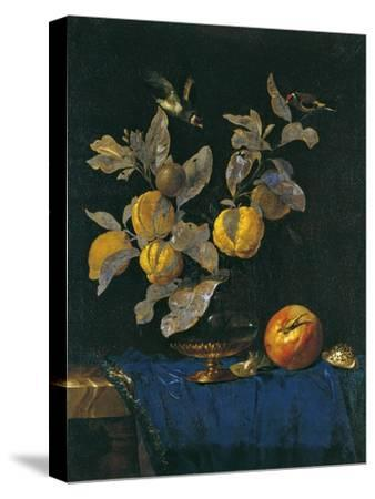 Still Life with Fruit-Willem van Aelst-Stretched Canvas Print