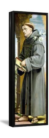 Saint Anthony of Padua-Bernardo Zenale-Framed Stretched Canvas Print