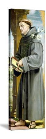 Saint Anthony of Padua-Bernardo Zenale-Stretched Canvas Print