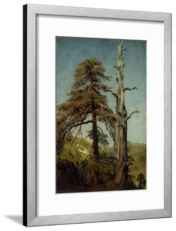 Study of Trees-August Cappelen-Framed Giclee Print
