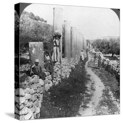 Herod's Street of Columns, Samaria, Palestine (Israe), 1905-Underwood & Underwood-Stretched Canvas Print