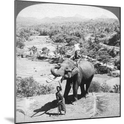 An Elephant and its Keeper, Sri Lanka, 1902-Underwood & Underwood-Mounted Giclee Print