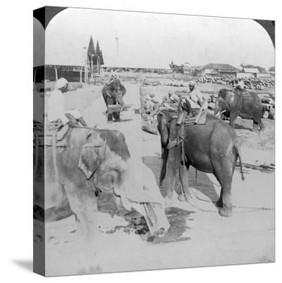 Elephants Working in a Timber Yard, India, C1900s-Underwood & Underwood-Stretched Canvas Print