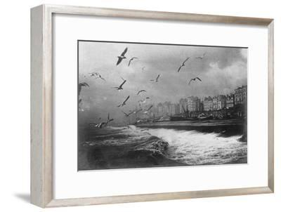 Gulls at Brighton, East Sussex, Early 20th Century--Framed Giclee Print