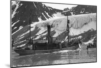 Whaling, Magdalene Bay, Spitzbergen, Norway, 1929--Mounted Giclee Print