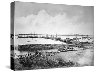 The Port, Auckland, New Zealand, C1870-1880--Stretched Canvas Print