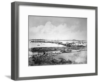 The Port, Auckland, New Zealand, C1870-1880--Framed Giclee Print