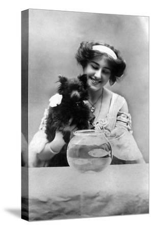 Sybil Arundale (1882-196), English Actress, 1900s- Lemeilleur-Stretched Canvas Print