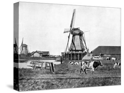 Dutch Windmills, Holland, Late 19th Century-John L Stoddard-Stretched Canvas Print