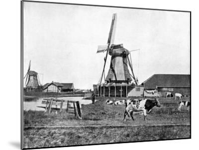 Dutch Windmills, Holland, Late 19th Century-John L Stoddard-Mounted Giclee Print
