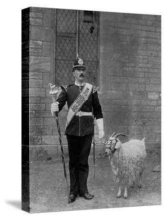 The Drum Major and Goat of the 1st Battalion the Welch Regiment, 1896-WM Crockett-Stretched Canvas Print