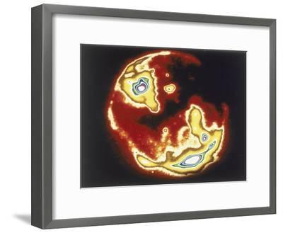X-Ray Image of Sun, Skylab, 1970S--Framed Giclee Print