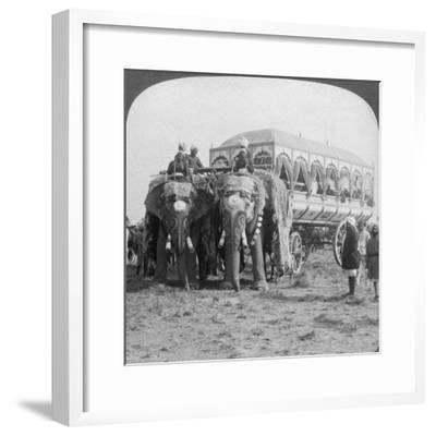 Richly Adorned Elephants and Carriage of the Maharaja of Rewa at the Delhi Durbar, India, 1903-Underwood & Underwood-Framed Giclee Print