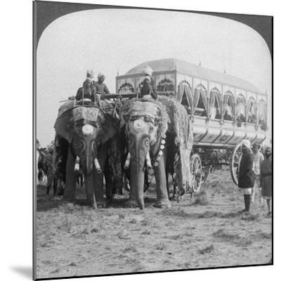 Richly Adorned Elephants and Carriage of the Maharaja of Rewa at the Delhi Durbar, India, 1903-Underwood & Underwood-Mounted Giclee Print