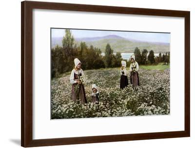 Picking Flowers in a Meadow Near Leksand, Sweden, C1923--Framed Giclee Print