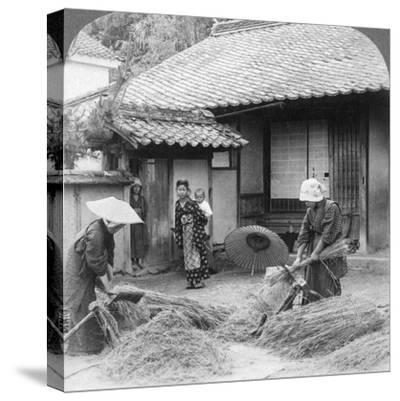 Farmers Wives at Work, Iwakuni, Japan, 1904-Underwood & Underwood-Stretched Canvas Print