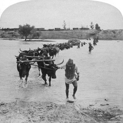 Fording the Modder River, Boer War, South Africa, 15th February 1901-Underwood & Underwood-Framed Giclee Print