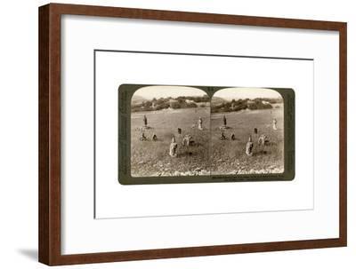 Gathering Tares from Wheat in the Stony Fields of Bethel (Bayti), Palestine, 1900-Underwood & Underwood-Framed Giclee Print
