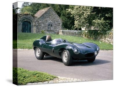 1954 Jaguar D Type--Stretched Canvas Print