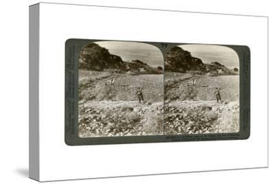 The Rock of Elijah's Altar on Mount Carmel, and the Plain of Esdraelon, Palestine, 1900-Underwood & Underwood-Stretched Canvas Print