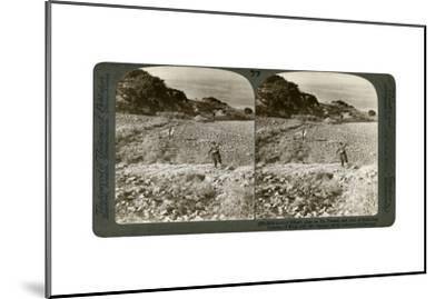 The Rock of Elijah's Altar on Mount Carmel, and the Plain of Esdraelon, Palestine, 1900-Underwood & Underwood-Mounted Giclee Print