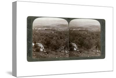 The Plain of Dothan, Palestine, 1900-Underwood & Underwood-Stretched Canvas Print