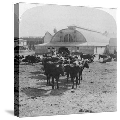 Building in Which Prisoners of War Were Tried, Pretoria, South Africa, Boer War, 1901-Underwood & Underwood-Stretched Canvas Print