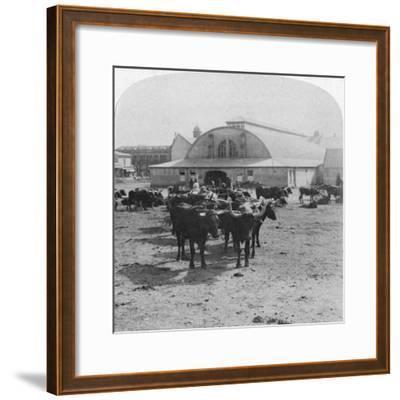 Building in Which Prisoners of War Were Tried, Pretoria, South Africa, Boer War, 1901-Underwood & Underwood-Framed Giclee Print