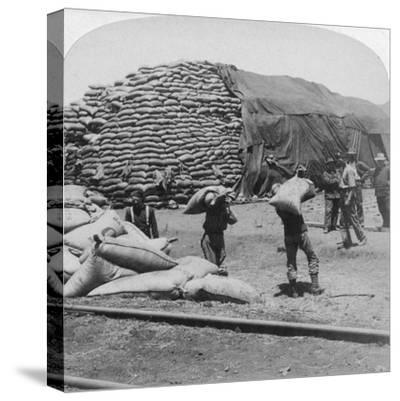 Tons Upon Tons of Oats for Tommy's Faithful Friend, De Aar, South Africa, Boer War, 1900-Underwood & Underwood-Stretched Canvas Print