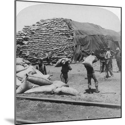 Tons Upon Tons of Oats for Tommy's Faithful Friend, De Aar, South Africa, Boer War, 1900-Underwood & Underwood-Mounted Giclee Print