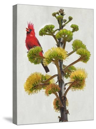 Avian Tropics I-Chris Vest-Stretched Canvas Print