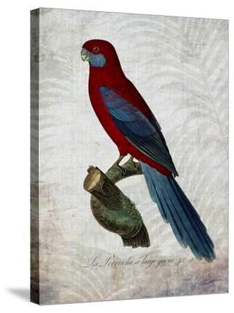 Parrot Jungle II-John Butler-Stretched Canvas Print