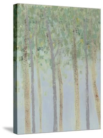 Hazy Woodlands I-Grace Popp-Stretched Canvas Print