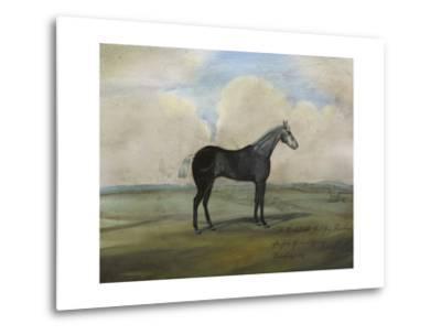 """The Kicker,"" a Steel Grey Racehorse-Naomi McCavitt-Metal Print"