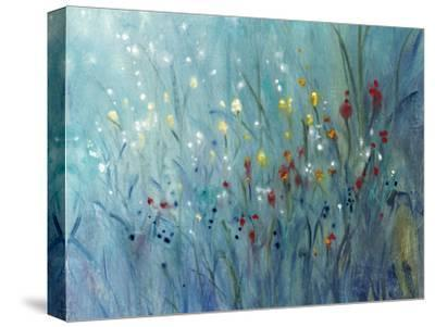 Blue Vision I-Tim O'toole-Stretched Canvas Print