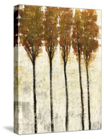 Crystal Canopy I-Tim O'toole-Stretched Canvas Print