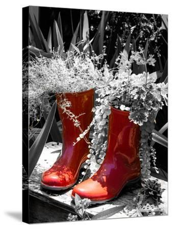 Rain Boots Border-Emily Navas-Stretched Canvas Print