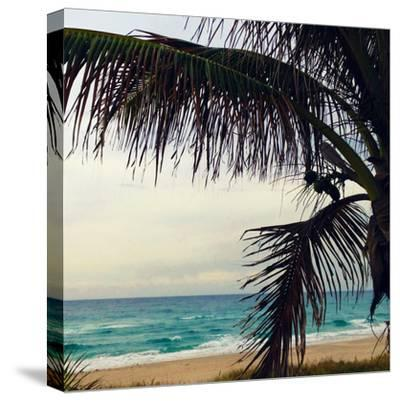 Palm and Beach-Lisa Hill Saghini-Stretched Canvas Print