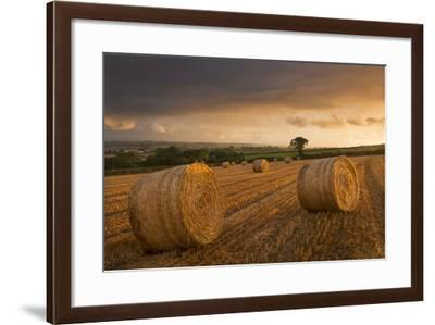 Hay Bales in a Ploughed Field at Sunset, Eastington, Devon, England. Summer (August)-Adam Burton-Framed Photographic Print