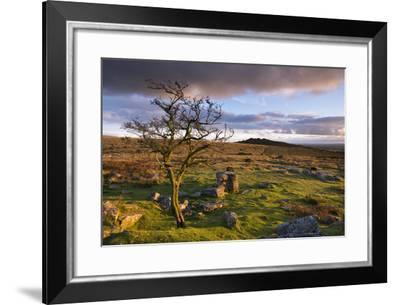 Looking to Pew Tor from Feather Tor, Dartmoor, Devon, England. Autumn (September)-Adam Burton-Framed Photographic Print