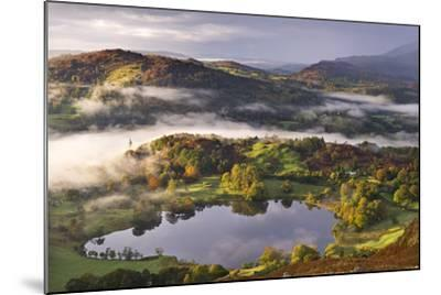 Loughrigg Tarn Surrounded by Misty Autumnal Countryside, Lake District, Cumbria-Adam Burton-Mounted Photographic Print